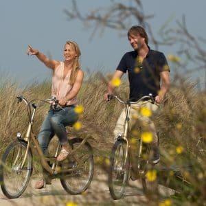 Fahrrad Arrangement